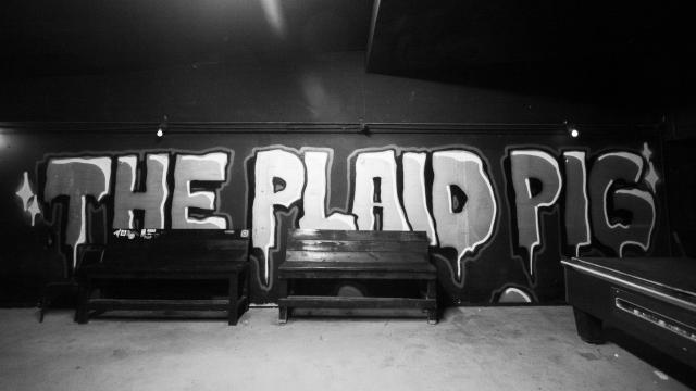 2019-03-02 Plaid Pig 50D (1)